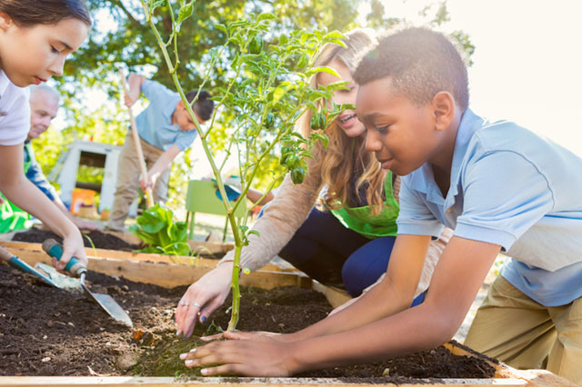 Young students in uniform outside in a gardening club with teacher scooping dirt onto growing plant.