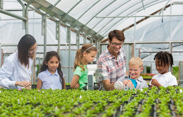 Students at a green house inspecting plants with a botanist and a teacher.