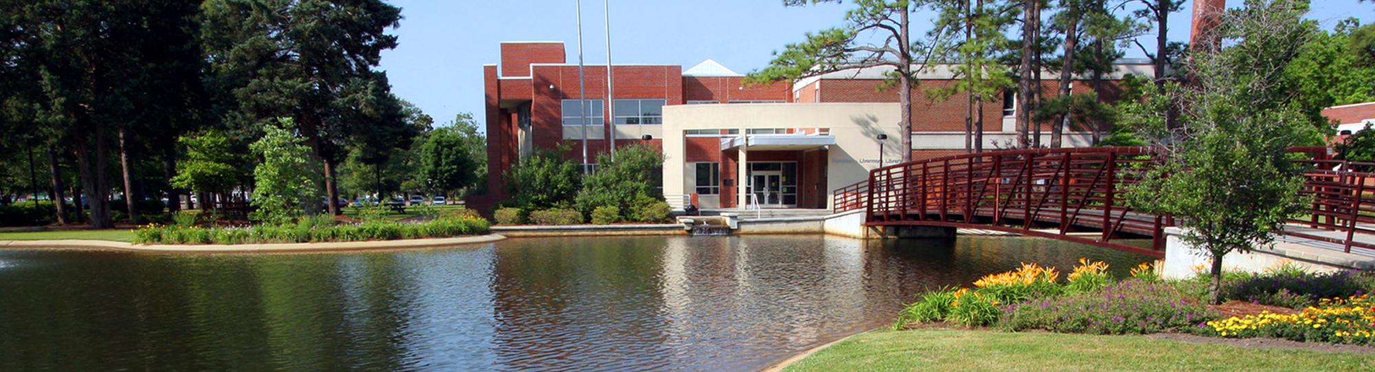 Lake in school